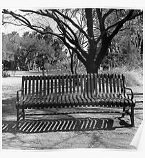 Agua Caliente Park Bench Poster
