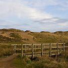 Bridge and Sand Dunes Holywell Bay by Brian Roscorla