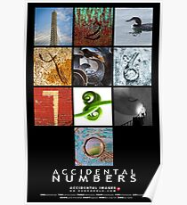 The Accidental Numbers Poster