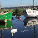 a swan at spike island by annieannie