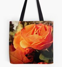 In the Autumn light  ^ Tote Bag