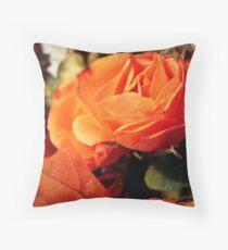 In the Autumn light  ^ Throw Pillow