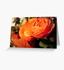 In the Autumn light  ^ Greeting Card