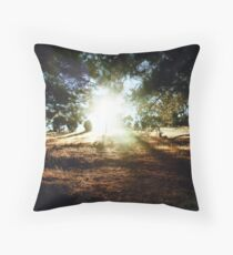 Sunlight Shower Throw Pillow