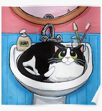 Sink Cat Poster