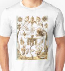 Organic Forms print T-Shirt