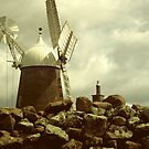 Callington Mill on Old Mill Lane  by waxyfrog