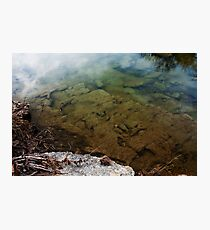 Dinosaur Tracks in the Paluxy River Photographic Print