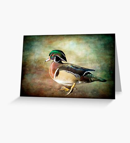 Handsome Fella - Wood Duck Greeting Card