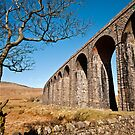 Ribblehead Viaduct by Stephen Knowles