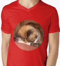 Calico Cat playing hide and seek Mens V-Neck T-Shirt