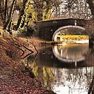 The Canal East Marton  by Irene  Burdell