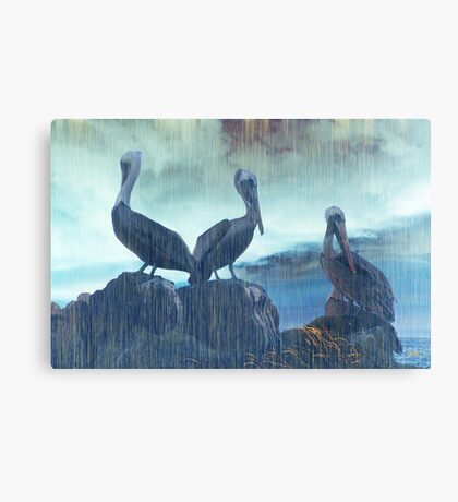 The Suns Still Out Canvas Print