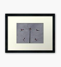 Flyers IV - Voladores Framed Print