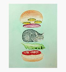 Catsup - Cat Burger Delight! Photographic Print