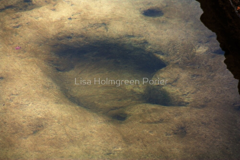 Footsteps Into Another Era by Lisa Holmgreen Porier