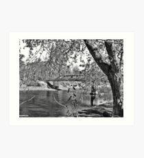 Beauty At The Lake Art Print