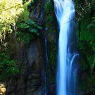Waterfall. by Francisco Larrea