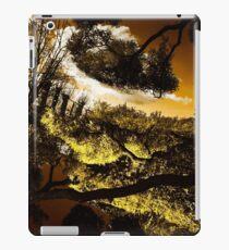 Ponds iPad Case/Skin