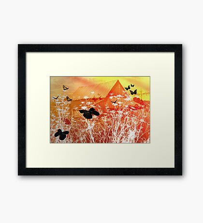 Butterflies Love The Country Framed Print