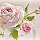 Romantic Recipe  by SandraRos