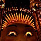LUNAcy - luna park at night by mellychan