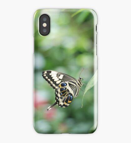butterfly in green iPhone Case/Skin