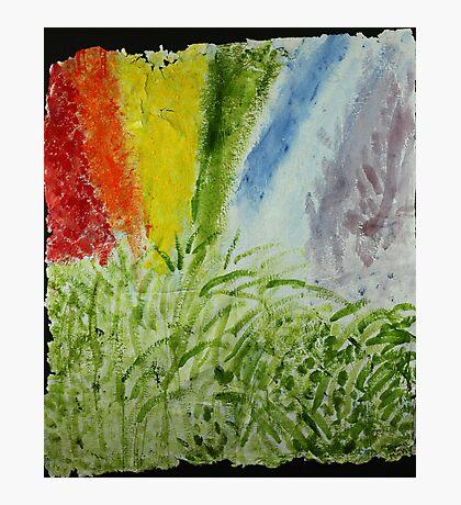 Genesis Laurel Rainbow Photographic Print