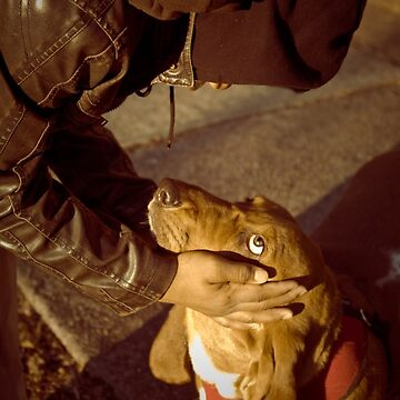 Knuckles at the school bus stop :) by eelsblueEllen