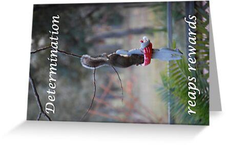 Determination by designingjudy