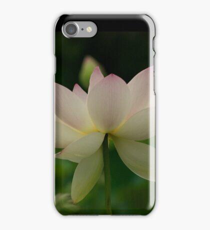 lotsa lotus iPhone Case/Skin