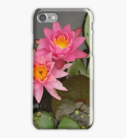 lilypads iPhone Case/Skin
