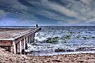 Pier on the Beach  by Elaine Manley