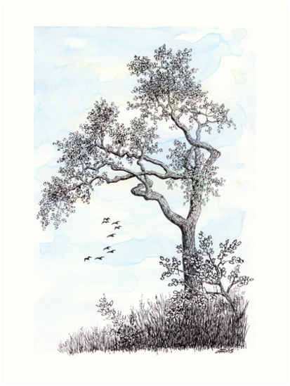PENDRAWING TREE - BACKGROUND AQUAREL by RainbowArt