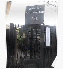 London Zoo/Prince Albert Gate -(190212)- digital photo Poster