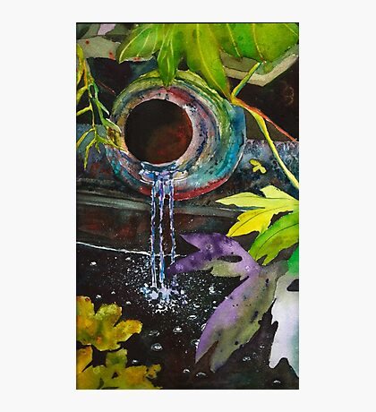Jungle Water Photographic Print