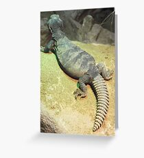 London Zoo/Reptile House -(190212)- digital photo Greeting Card