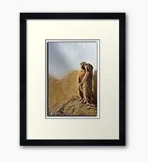 We're on guard now Framed Print