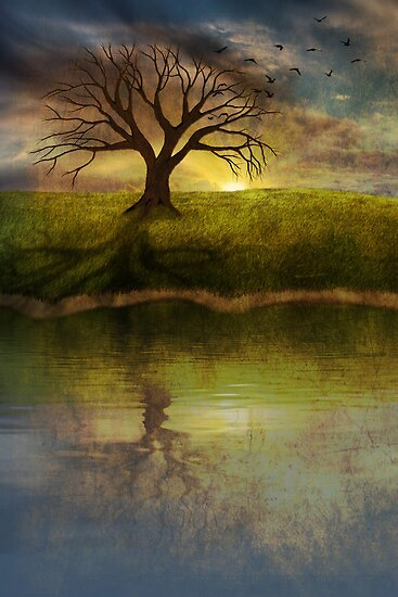 Silent Tree IV by Megan Noble
