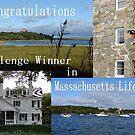 Banner for Massachusetts Life Group Challenge Winner by Joni  Rae