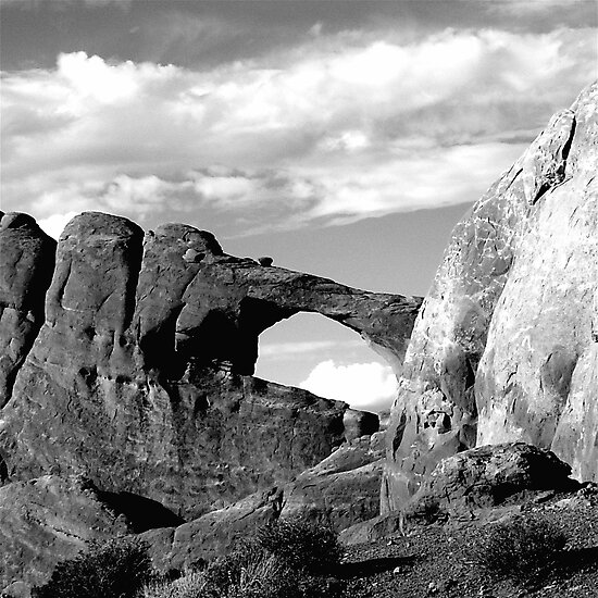 ARCHES by Thomas Barker-Detwiler