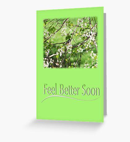 Feel Better Soon Black Cap Chickadee In Spring Greeting Card