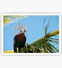 Victoria Crowned Pigeon, Papua New Guinea Sticker