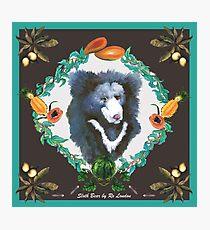 Sloth Bear Photographic Print