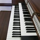 Alle Stopps ausziehen - Orgel Keyboards und Stops von BlueMoonRose