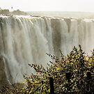 Victoria Falls by Christina Backus