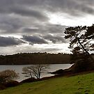 THEN IT CLOUDED OVER by AndyReeve