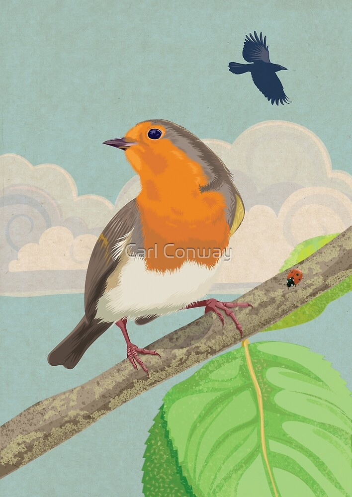 Robin and ladybird by Carl Conway