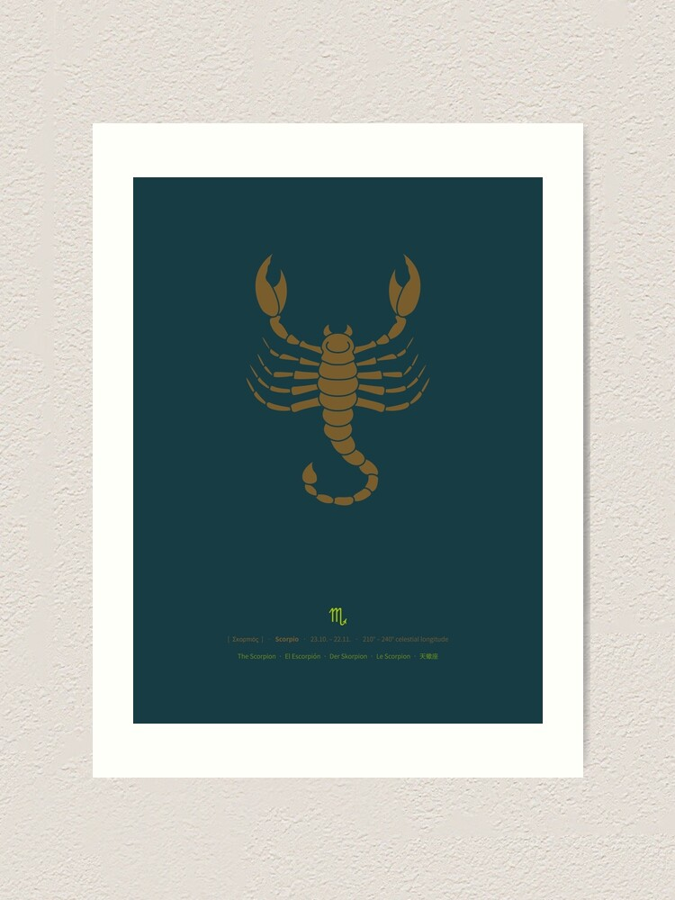Alternate view of Scorpio Zodiac / Scorpion Star Sign Poster Art Print