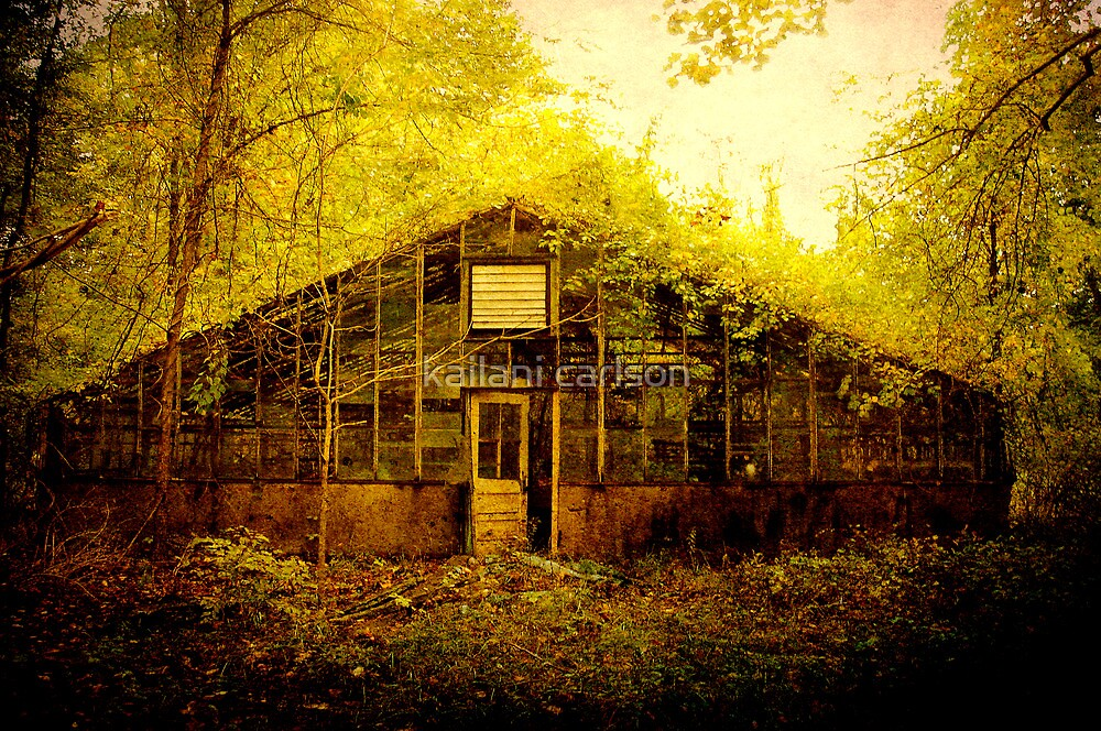 Abandoned Green House- soon to be demolished by kailani carlson